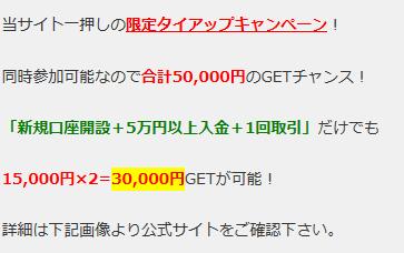 Wキャンペーン紹介